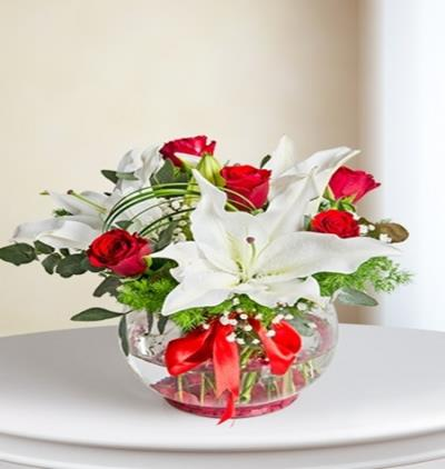 Bora Flora Lilyum ve GÜL 2