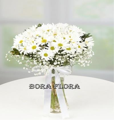 Bora Flora Vazoda Papatya,cipso