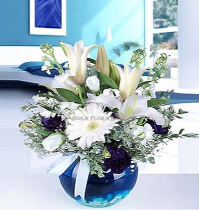 Bora Flora Mavi Akvaryum