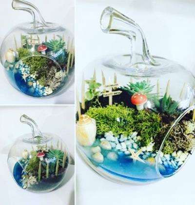 Bora Flora Terrarıum 8
