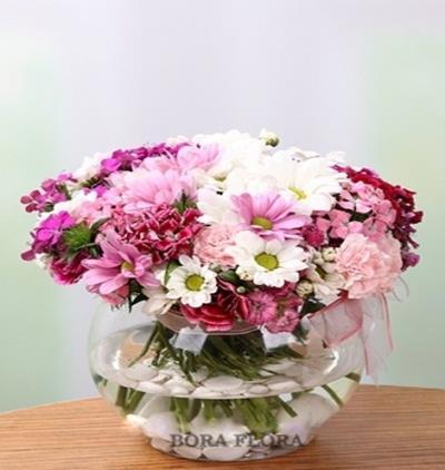 Bora Flora Rengarenk Kırçiçekleri